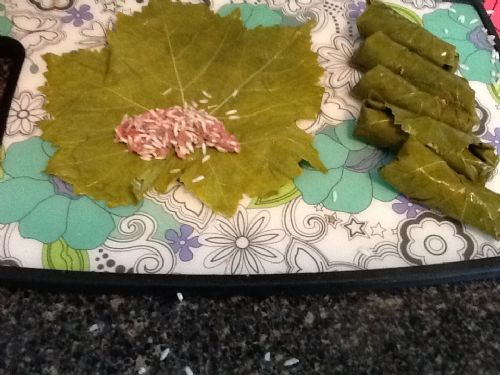 Grape Leaves (Warrah Arrish)