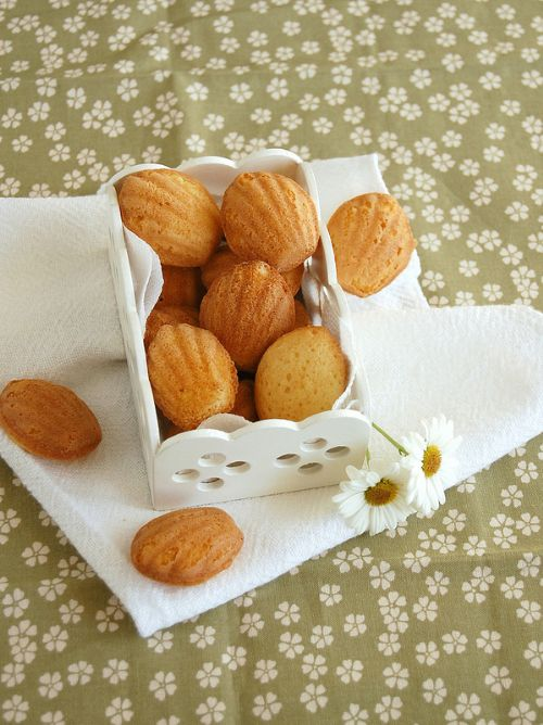 White Chocolate and Lemon Madeleines