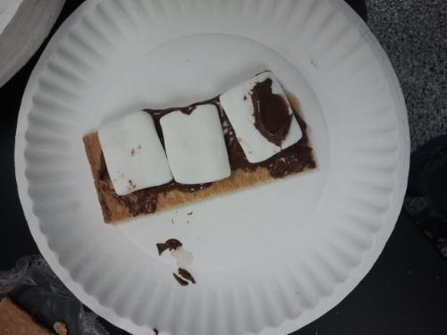 S'Mores With a Nutella Make-Over