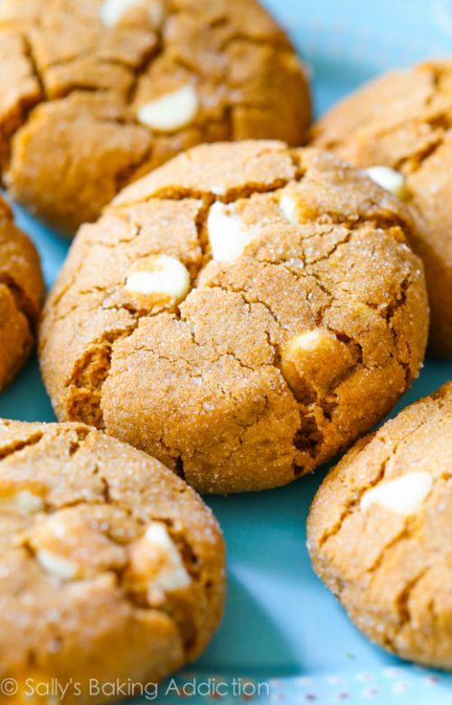 Soft Baked White Chocolate Chip Molasses Cookies